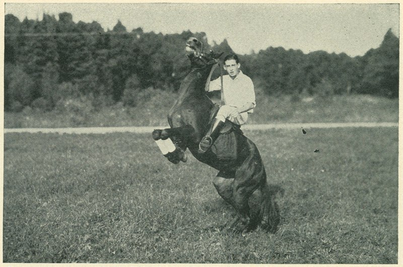 School Rider